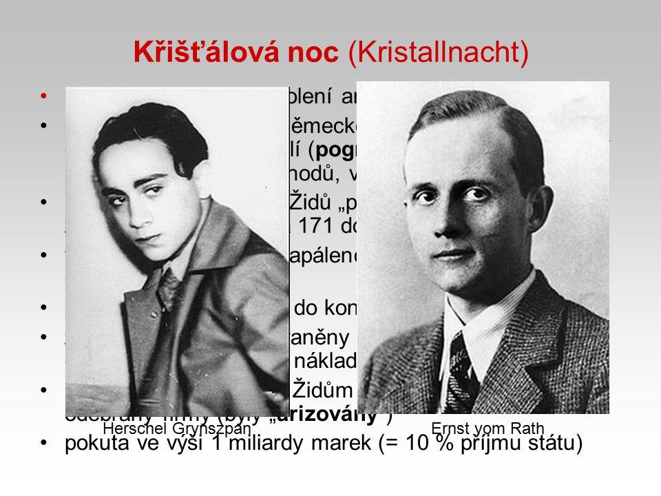 Křišťálová noc (Kristallnacht)