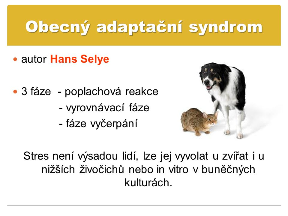 Obecný adaptační syndrom