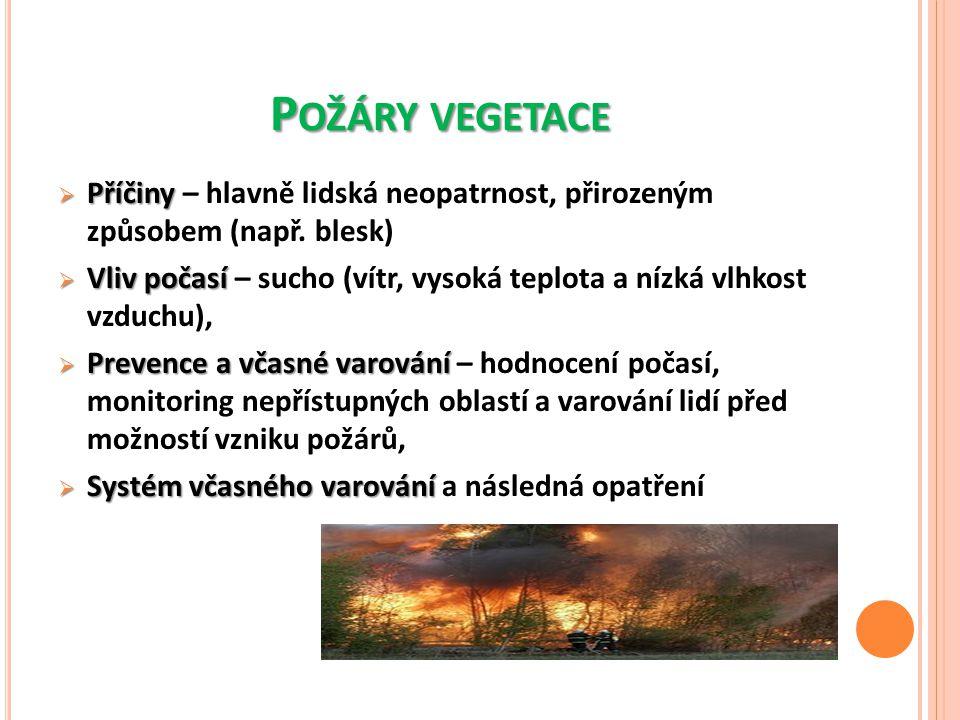 Požáry vegetace Příčiny – hlavně lidská neopatrnost, přirozeným způsobem (např. blesk)