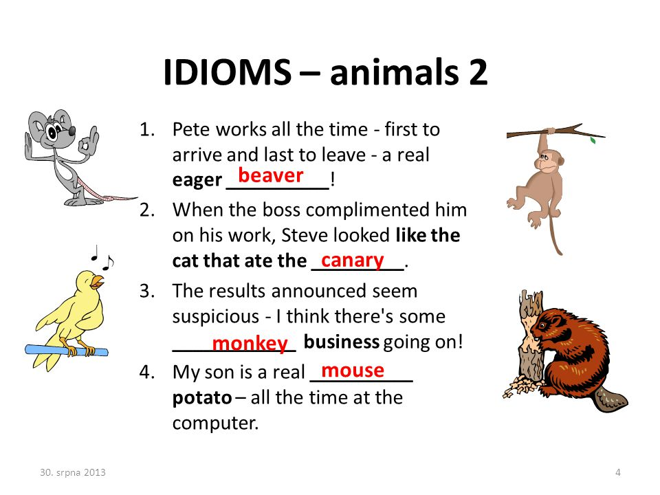 IDIOMS – animals 2 beaver canary monkey mouse
