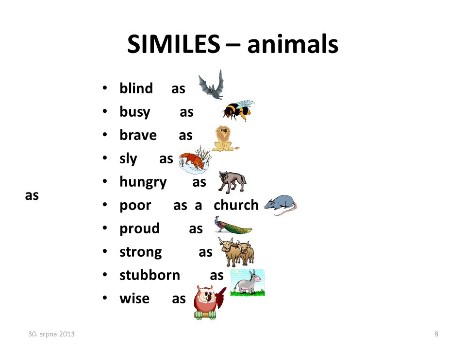 SIMILES – animals blind as busy as brave as sly as hungry as