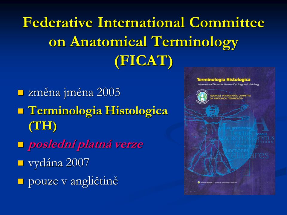 Federative International Committee on Anatomical Terminology (FICAT)