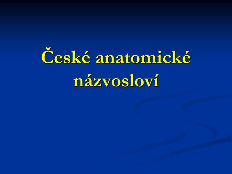 České anatomické názvosloví