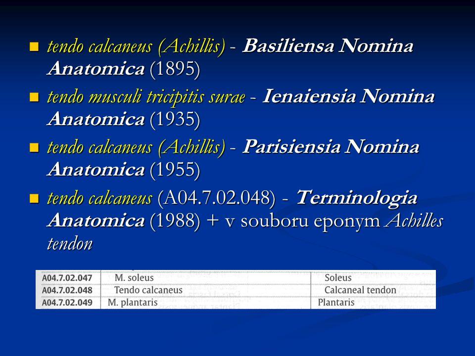 tendo calcaneus (Achillis) - Basiliensa Nomina Anatomica (1895)