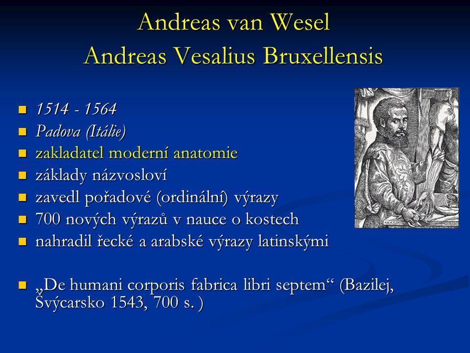 Andreas van Wesel Andreas Vesalius Bruxellensis
