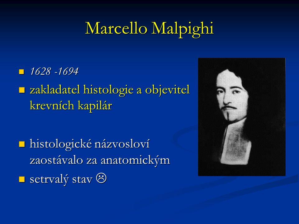 Marcello Malpighi zakladatel histologie a objevitel krevních kapilár
