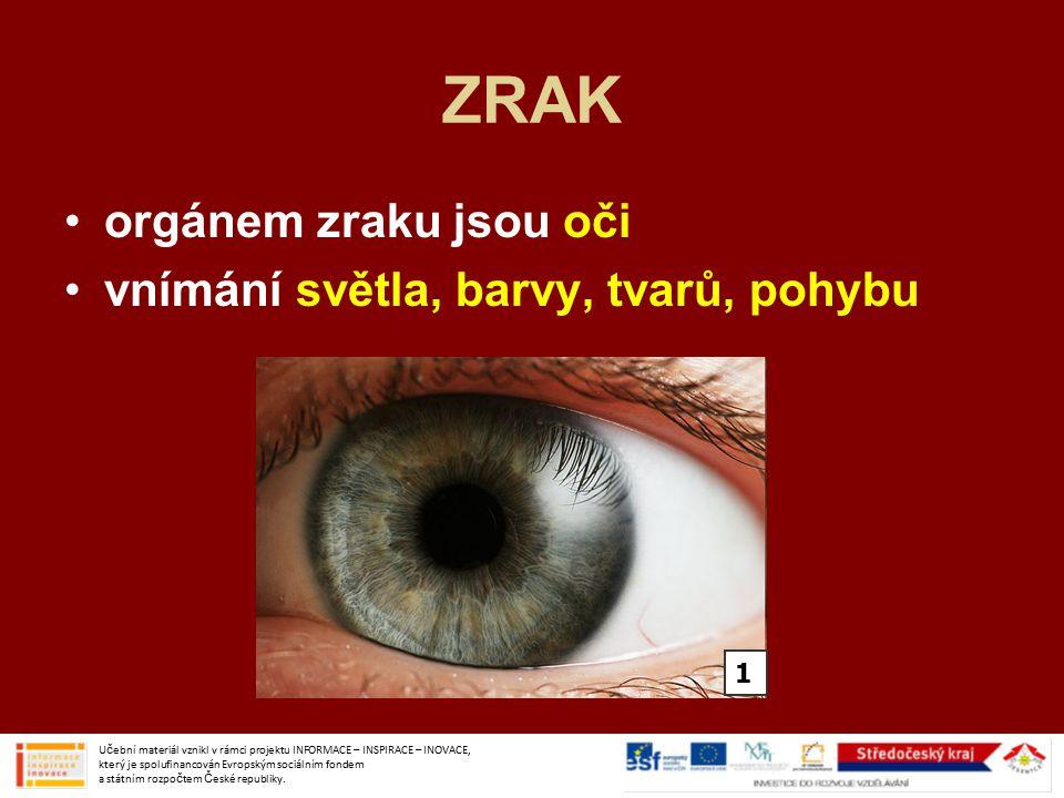ZRAK orgánem zraku jsou oči vnímání světla, barvy, tvarů, pohybu 1