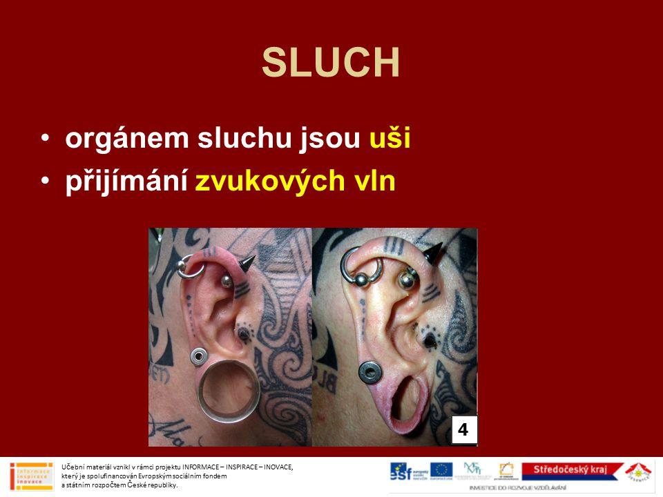 SLUCH orgánem sluchu jsou uši přijímání zvukových vln 4