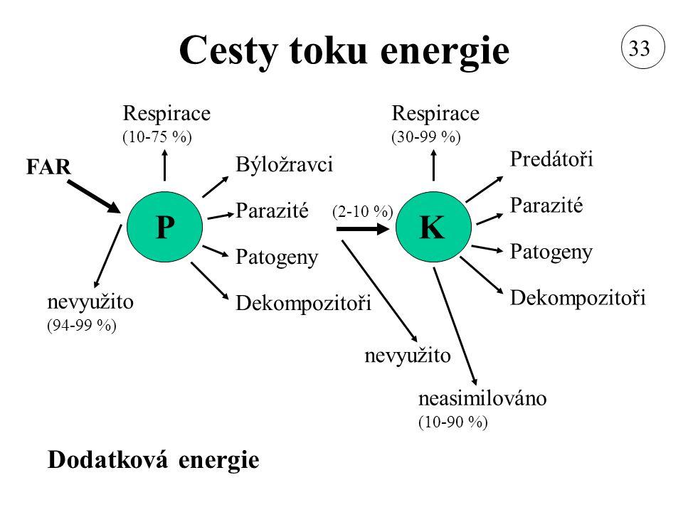 Cesty toku energie P K Dodatková energie 33 Respirace (10-75 %)