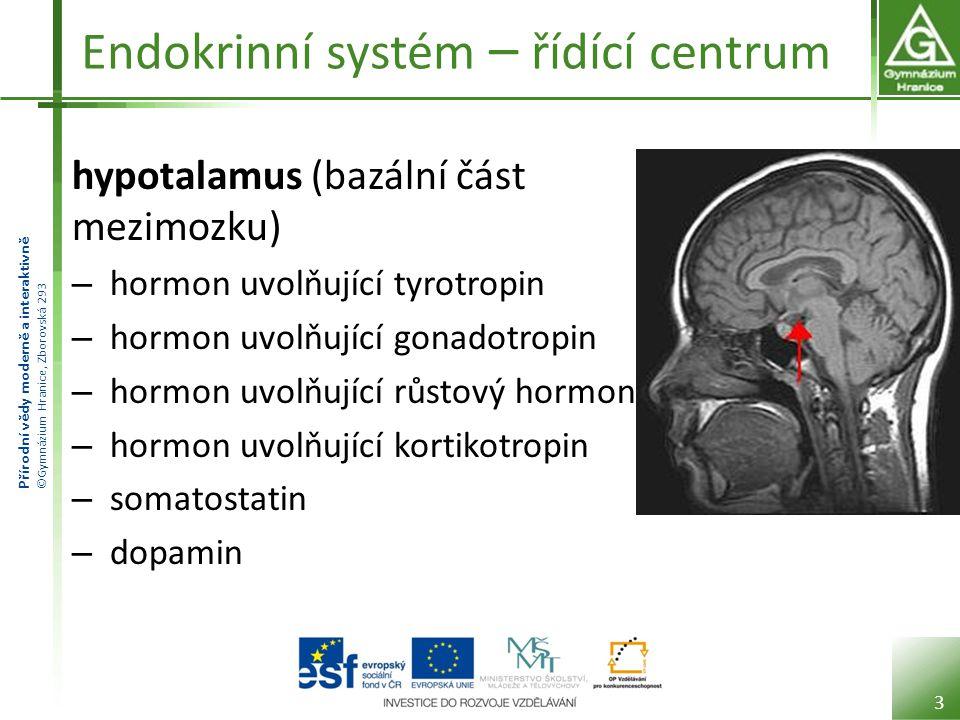 Endokrinní systém – řídící centrum