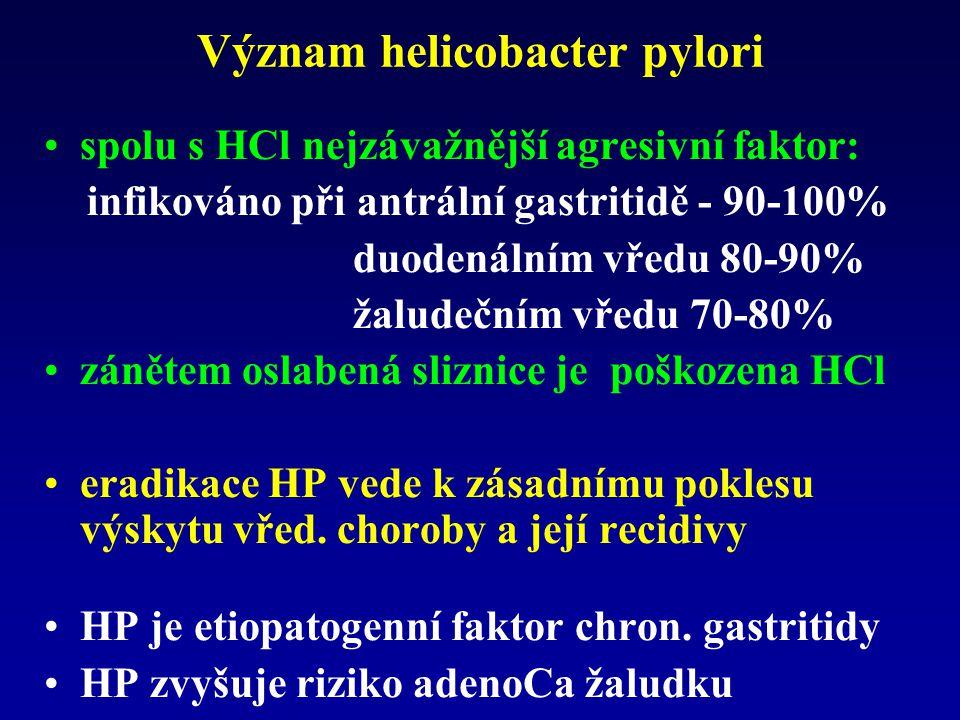 Význam helicobacter pylori