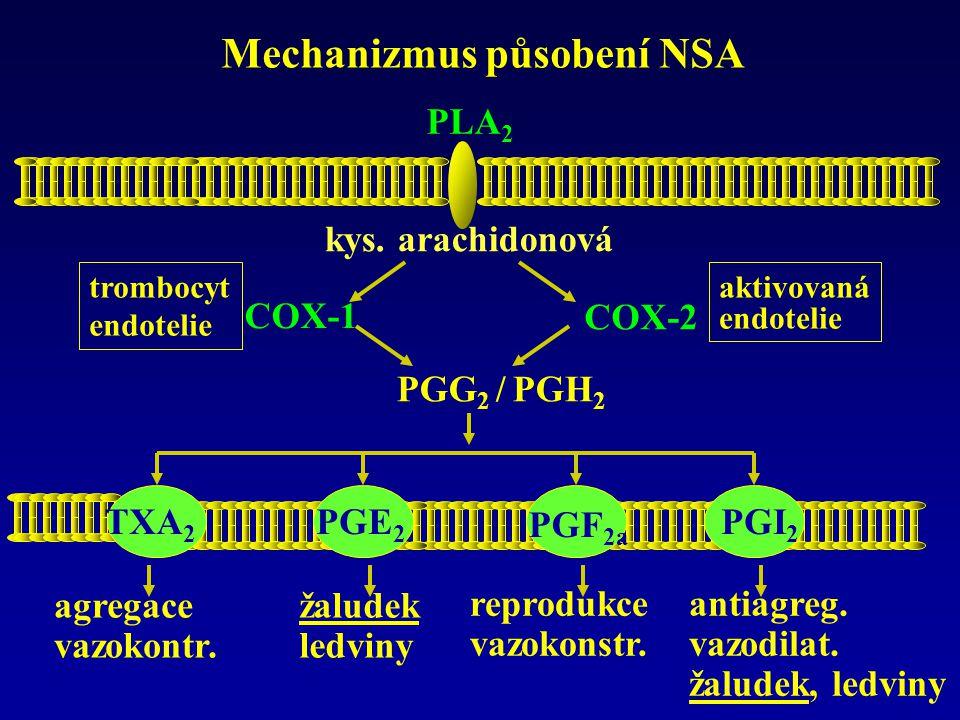 Mechanizmus působení NSA