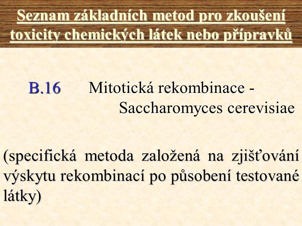 B.16 Mitotická rekombinace - Saccharomyces cerevisiae