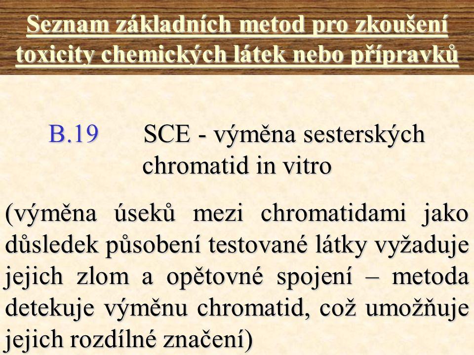 B.19 SCE - výměna sesterských chromatid in vitro