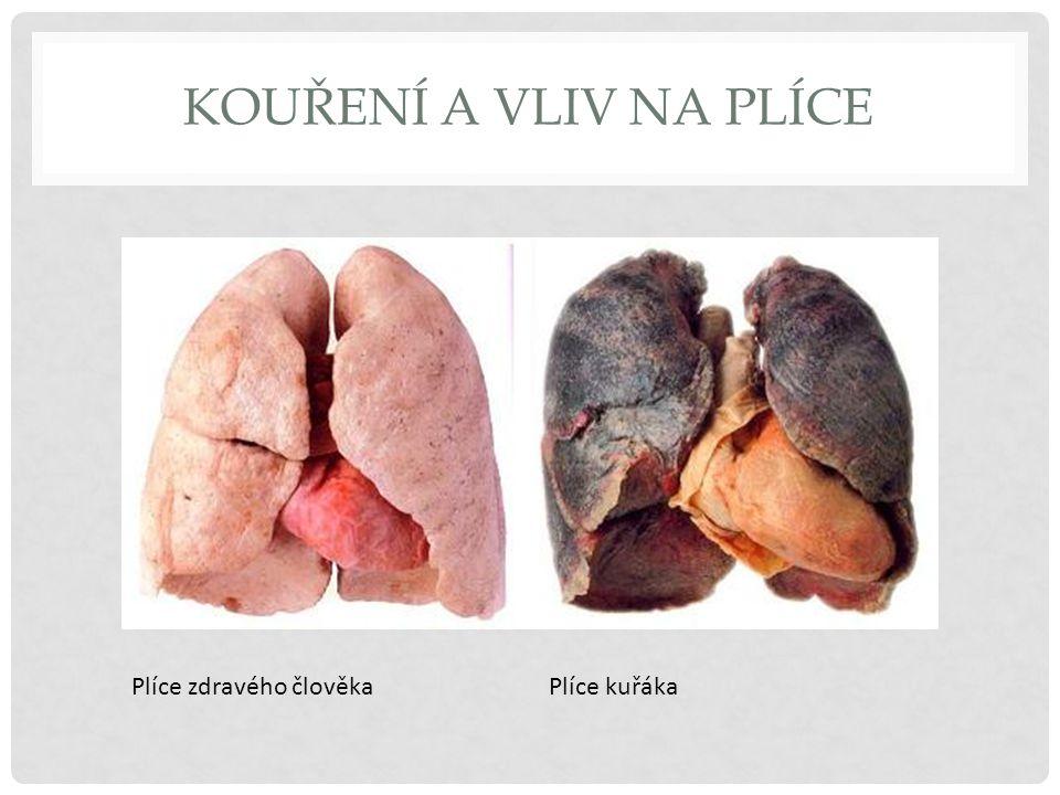 Kouření a vliv na plíce Plíce zdravého člověka Plíce kuřáka