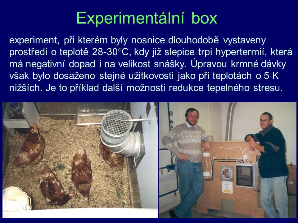 Experimentální box