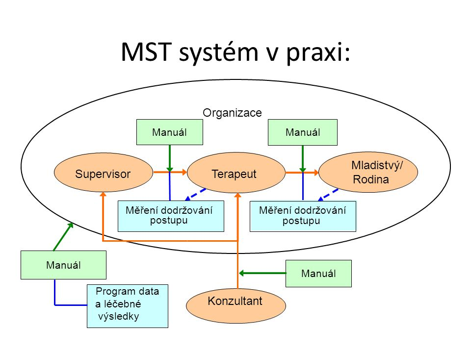 MST systém v praxi: Organizace Mladistvý/ Supervisor Terapeut Rodina
