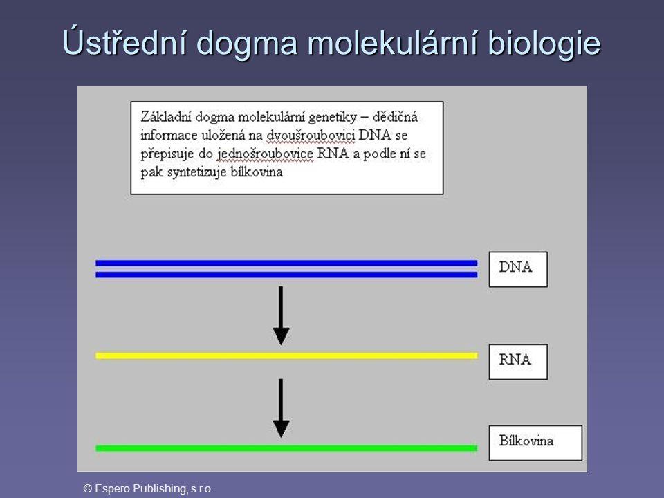 Ústřední dogma molekulární biologie