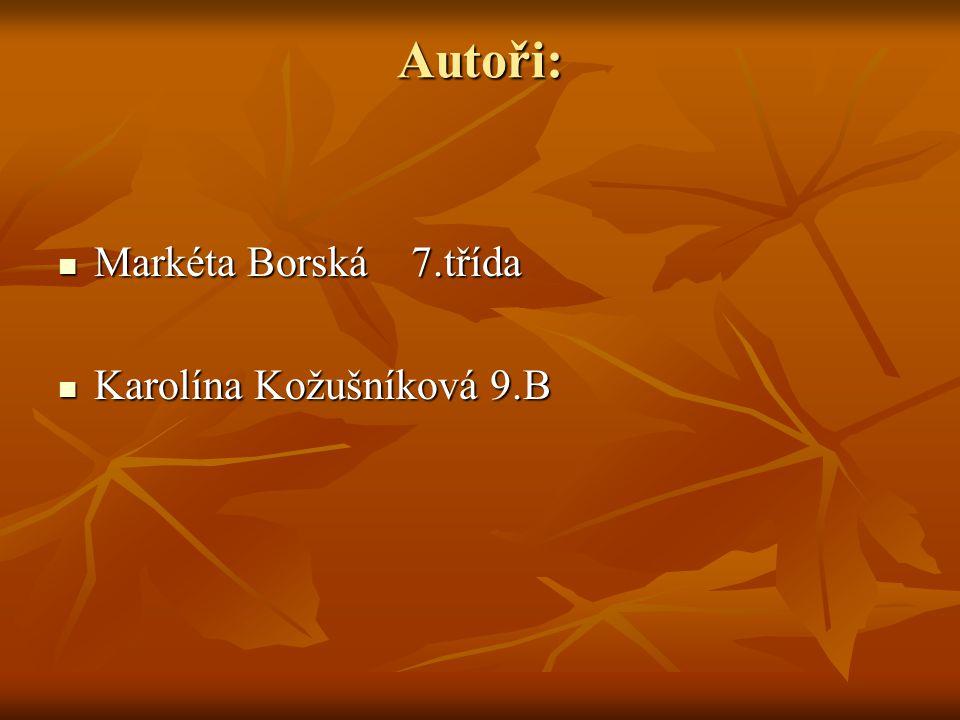 Autoři: Markéta Borská 7.třída Karolína Kožušníková 9.B