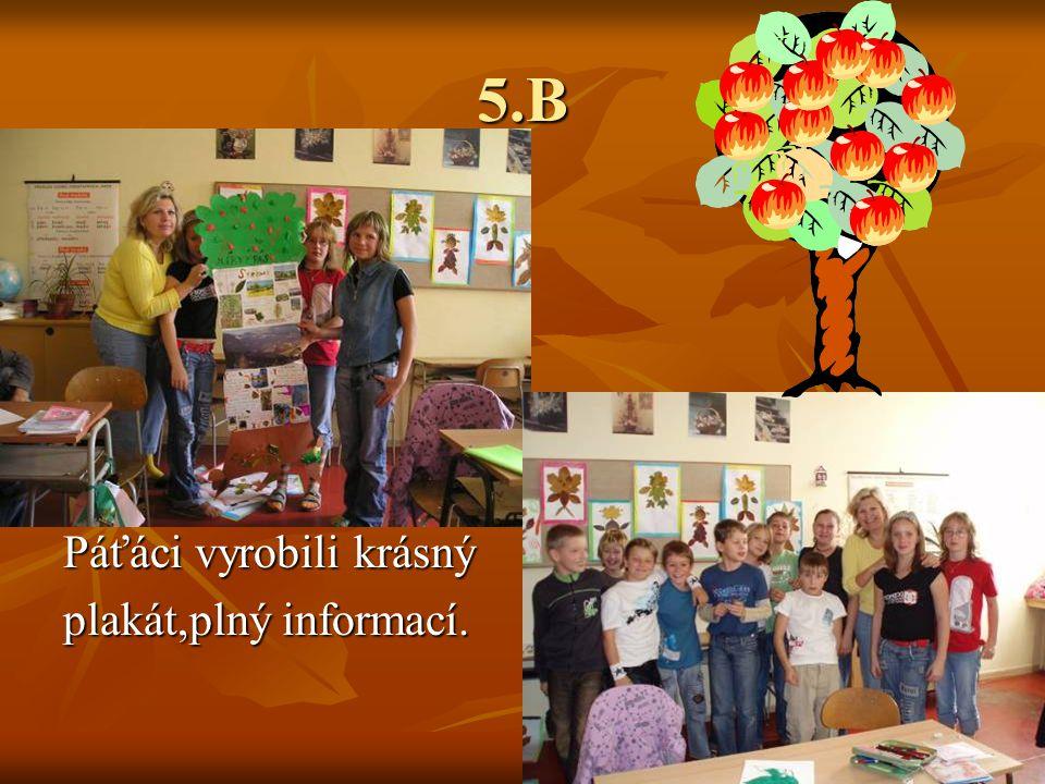 5.B Páťáci vyrobili krásný plakát,plný informací.