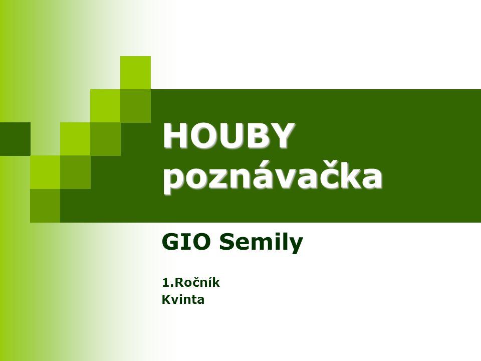 GIO Semily 1.Ročník Kvinta