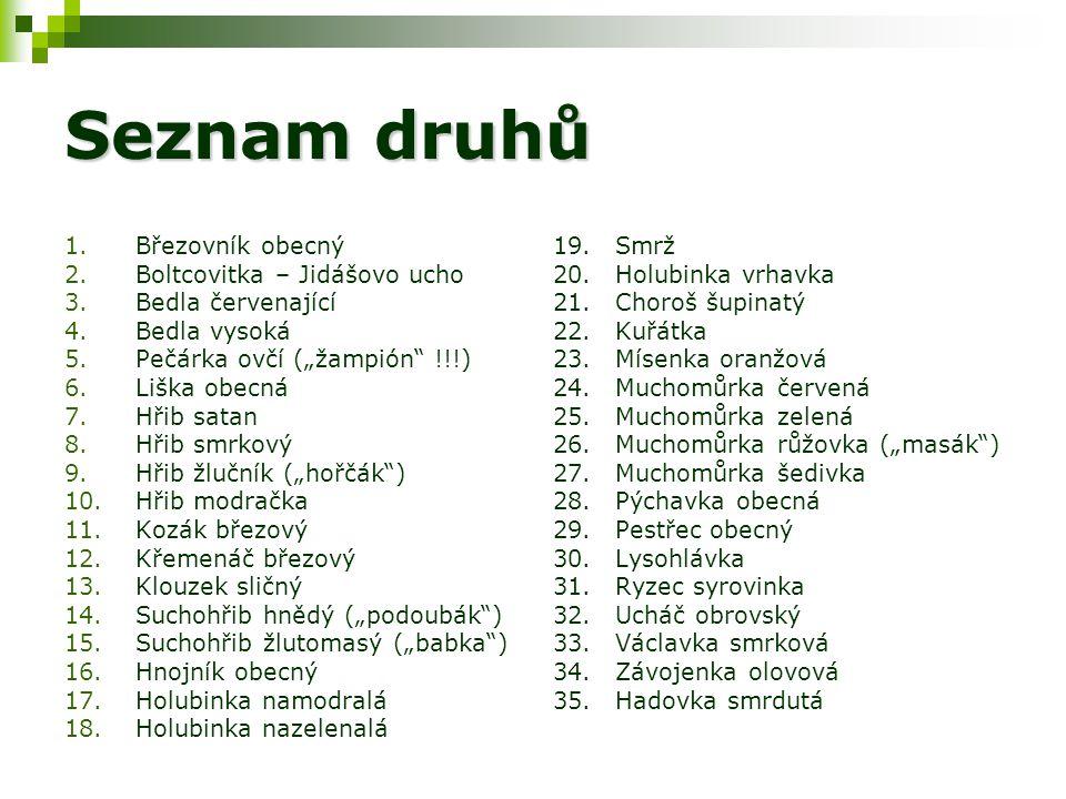 Seznam druhů Březovník obecný Boltcovitka – Jidášovo ucho