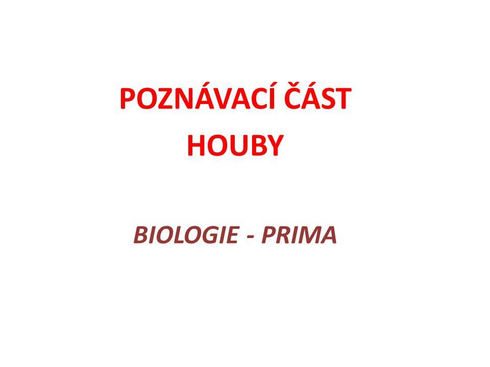 POZNÁVACÍ ČÁST HOUBY BIOLOGIE - PRIMA