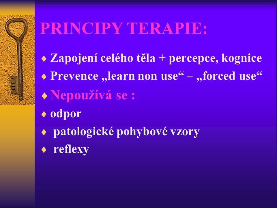 PRINCIPY TERAPIE: Nepoužívá se :