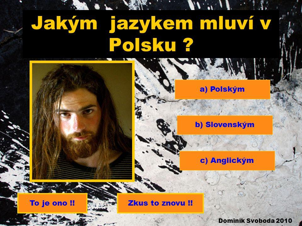 Jakým jazykem mluví v Polsku