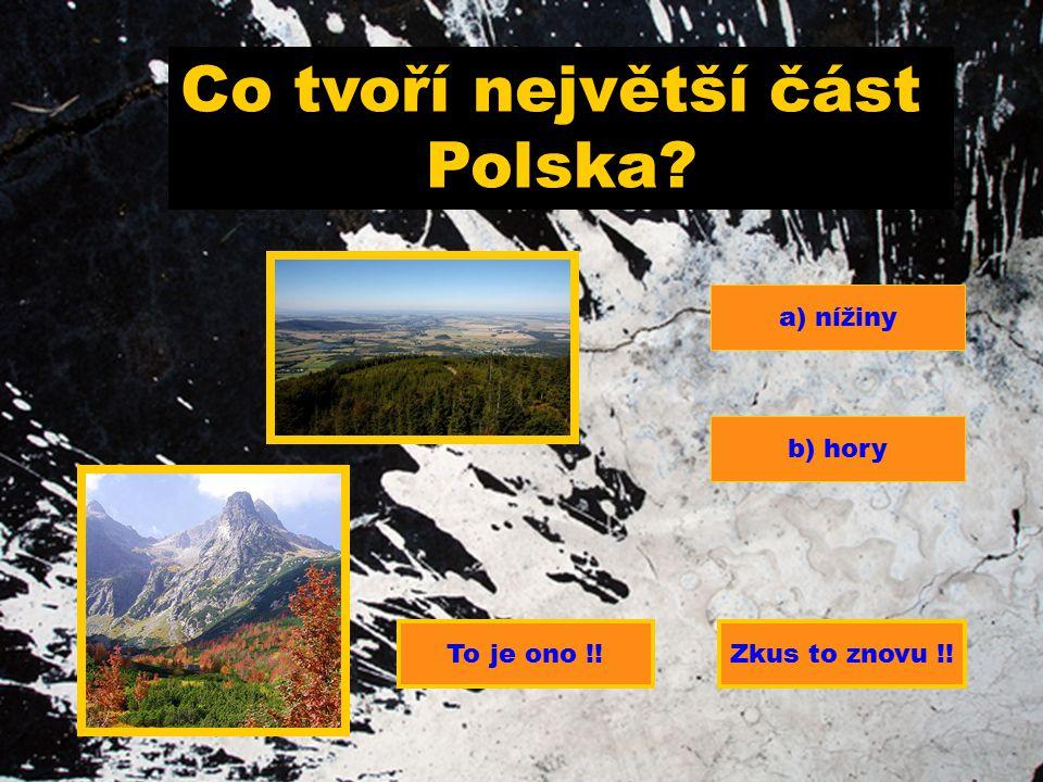 Co tvoří největší část Polska a) nížiny b) hory To je ono !!