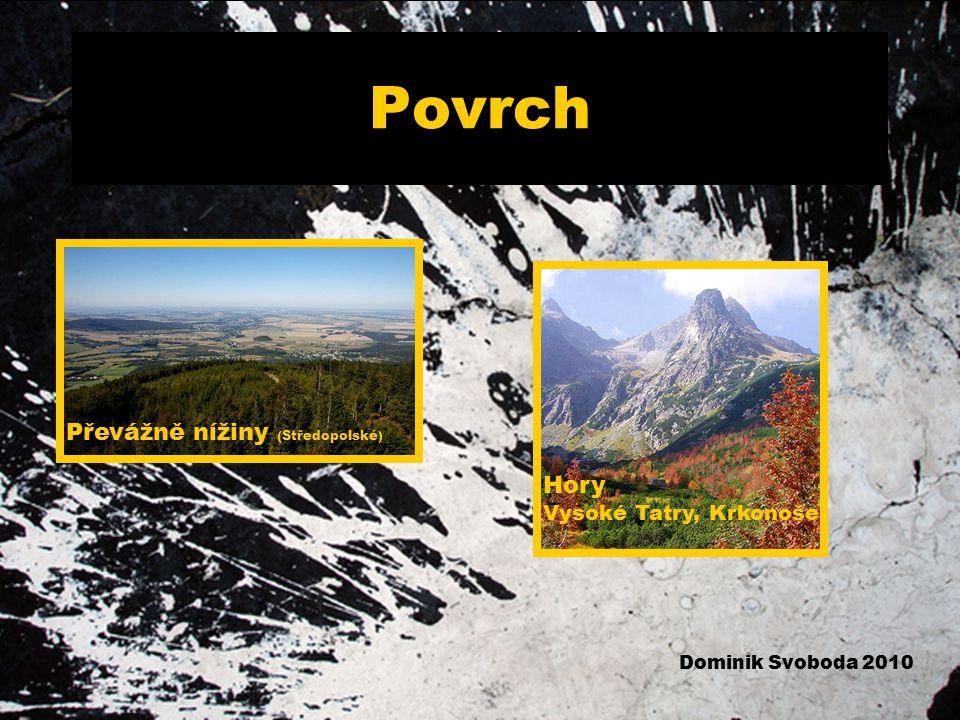 Povrch Převážně nížiny (Středopolské) Hory Vysoké Tatry, Krkonoše
