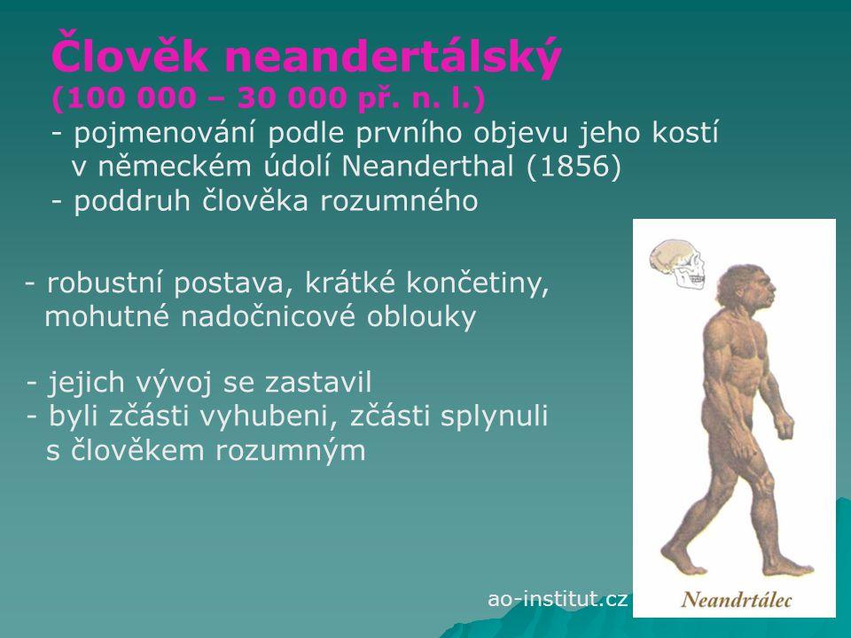 Člověk neandertálský (100 000 – 30 000 př. n. l.)