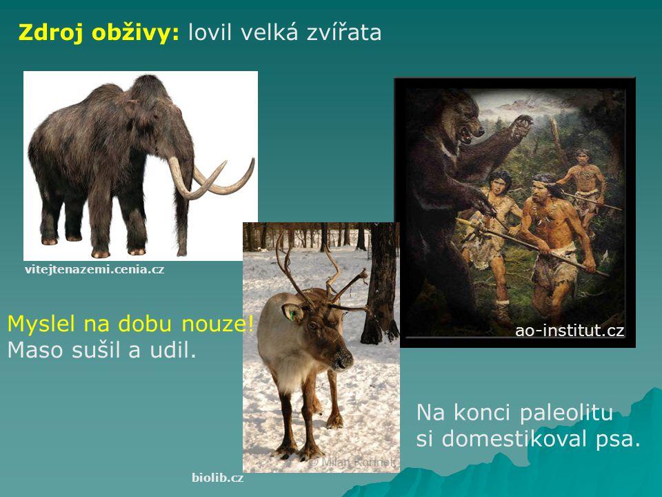 Zdroj obživy: lovil velká zvířata