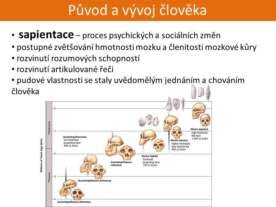 Živorodí - placentálové