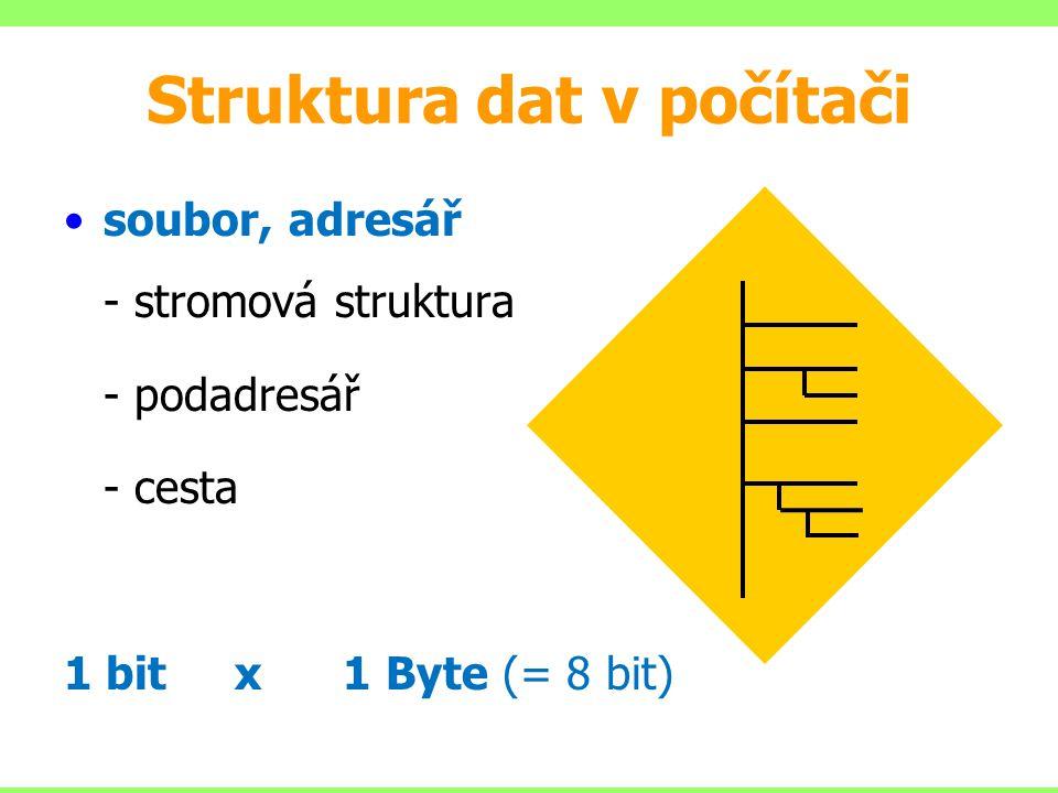 Struktura dat v počítači