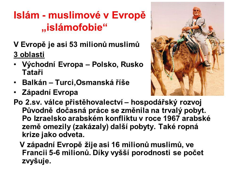 """Islám - muslimové v Evropě """"islámofobie"""