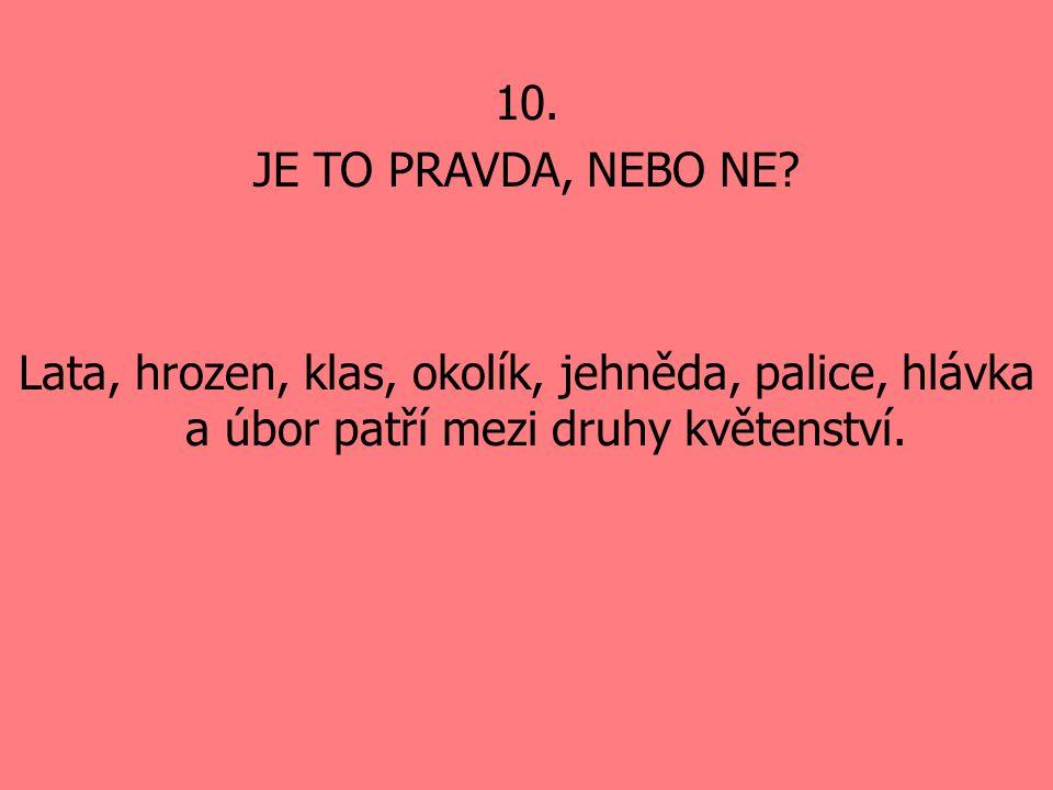 10. JE TO PRAVDA, NEBO NE.