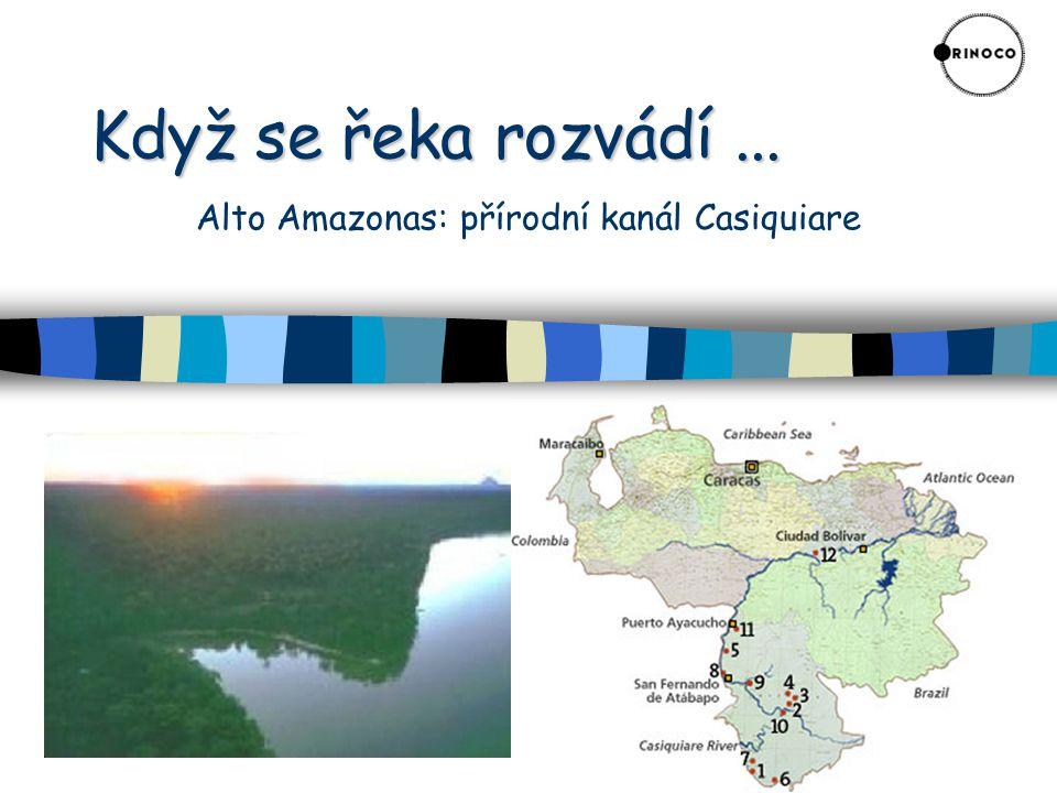 Když se řeka rozvádí ... Alto Amazonas: přírodní kanál Casiquiare