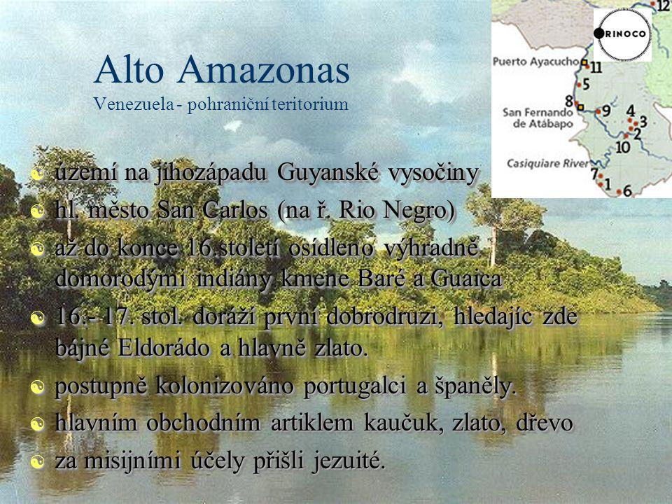 Alto Amazonas Venezuela - pohraniční teritorium