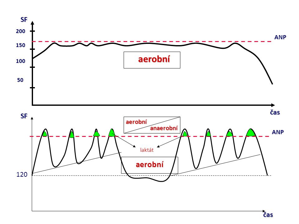 aerobní SF čas SF 120 čas ANP aerobní anaerobní ANP 200 150 100 50