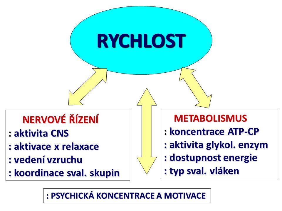 RYCHLOST NERVOVÉ ŘÍZENÍ METABOLISMUS : aktivita CNS