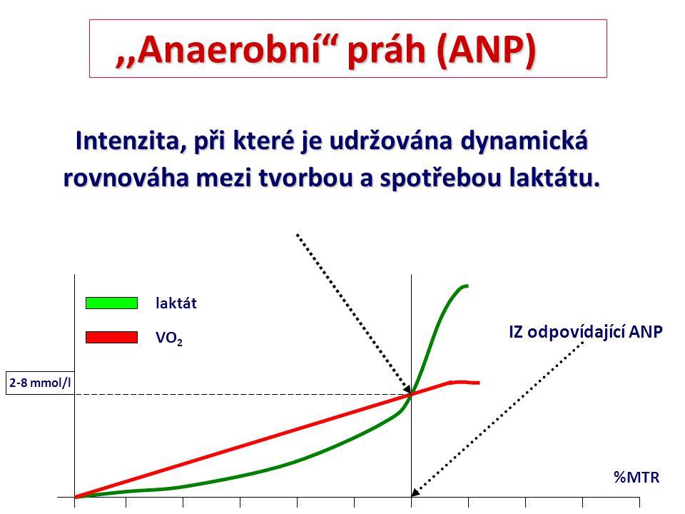 ,,Anaerobní práh (ANP) Intenzita, při které je udržována dynamická