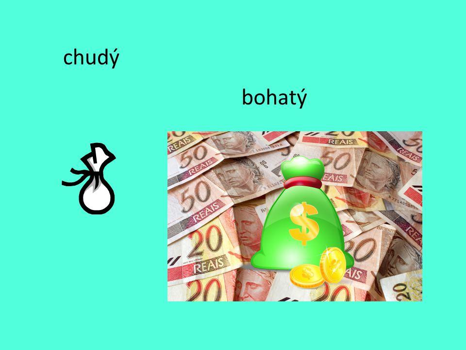 chudý bohatý
