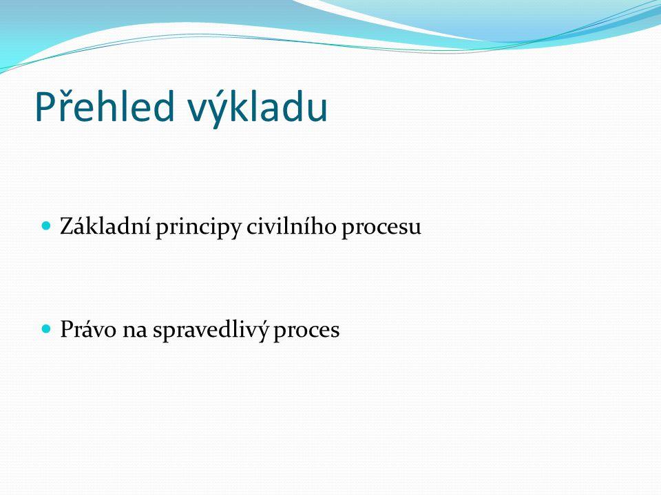 Přehled výkladu Základní principy civilního procesu