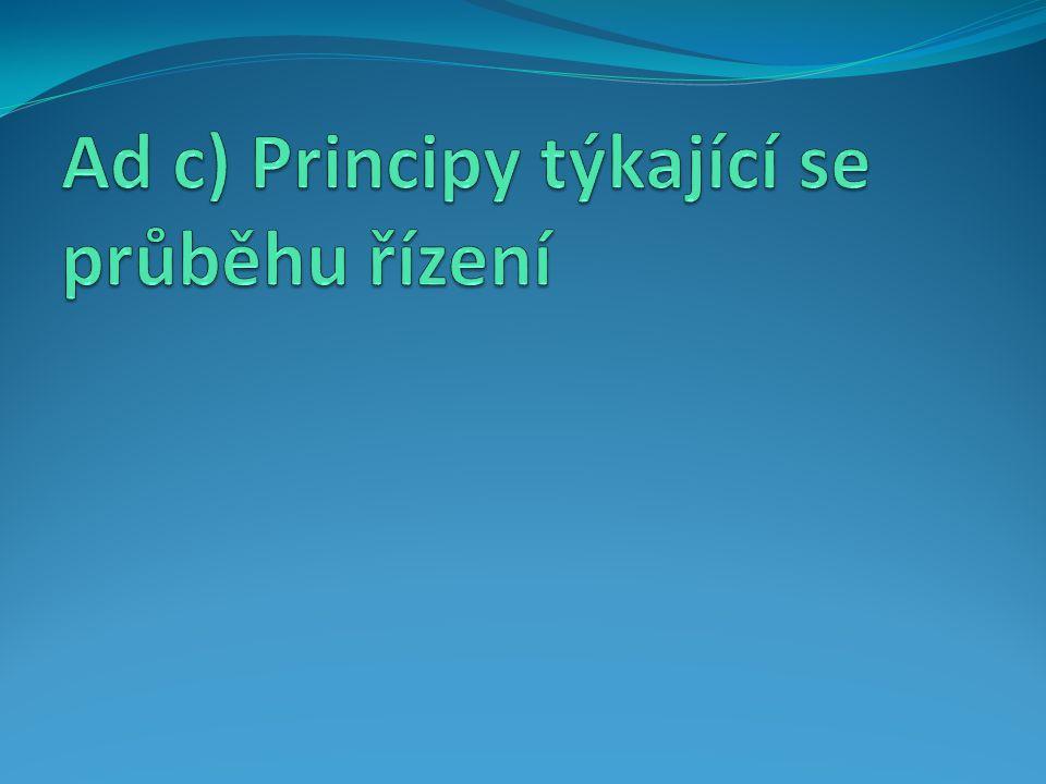Ad c) Principy týkající se průběhu řízení