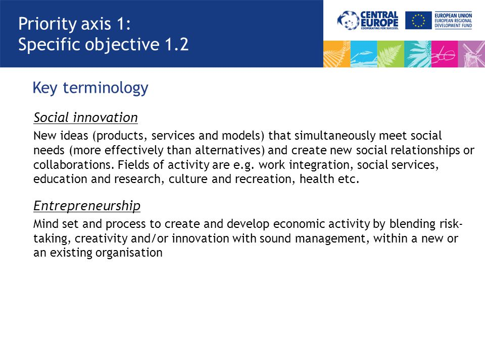 Priority axis 1: Specific objective 1.2 Key terminology