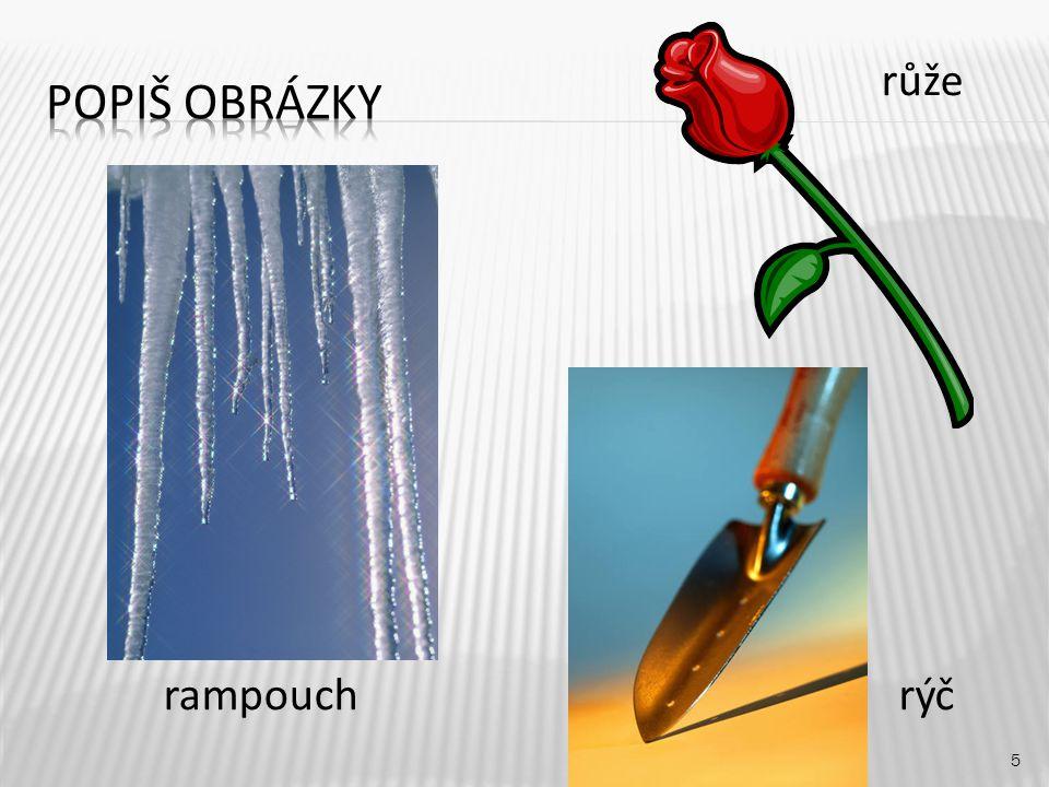 Popiš obrázky růže rampouch rýč