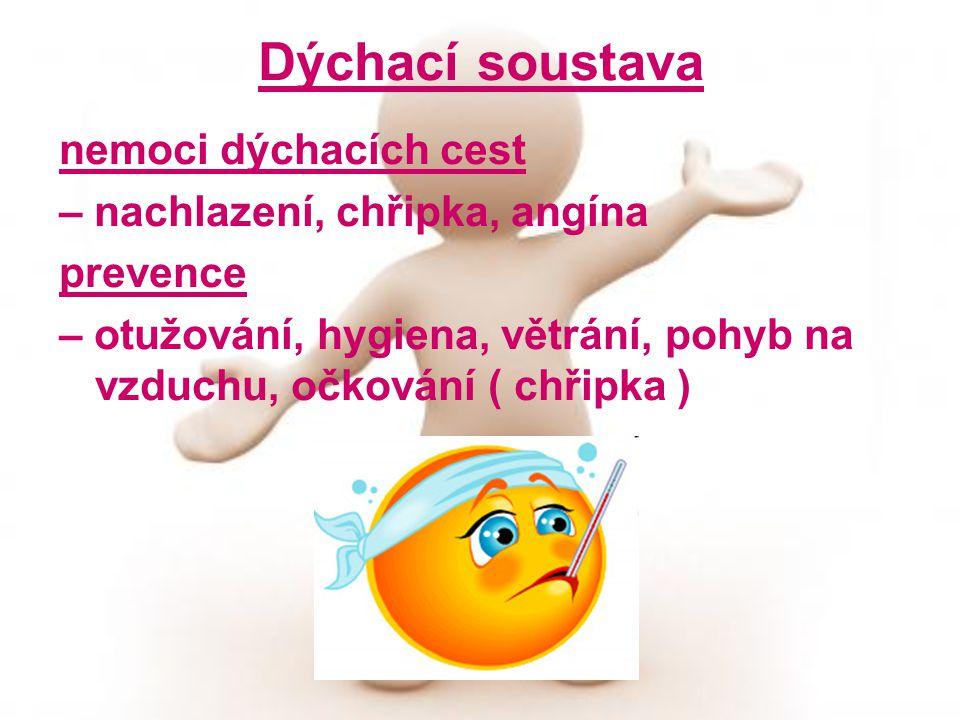 Dýchací soustava nemoci dýchacích cest – nachlazení, chřipka, angína