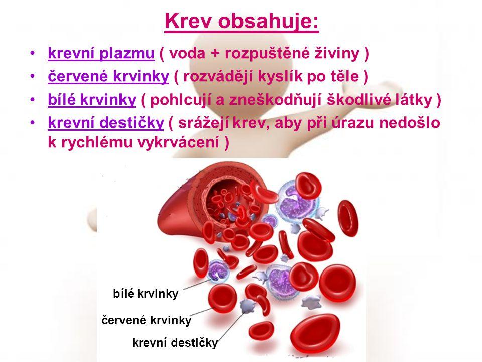 Krev obsahuje: krevní plazmu ( voda + rozpuštěné živiny )