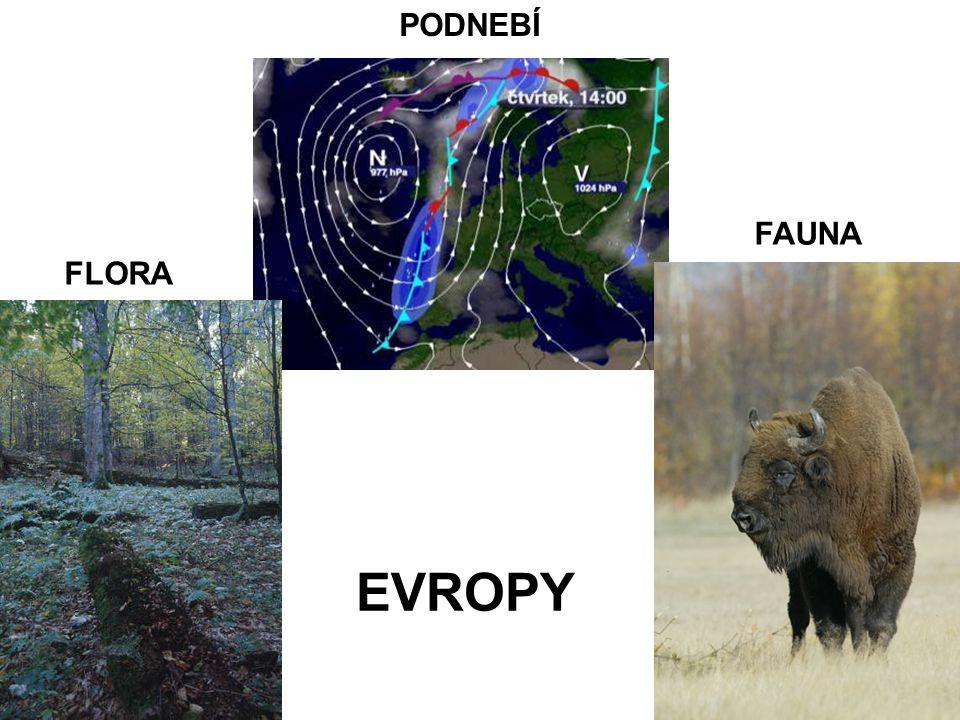 PODNEBÍ FAUNA FLORA EVROPY